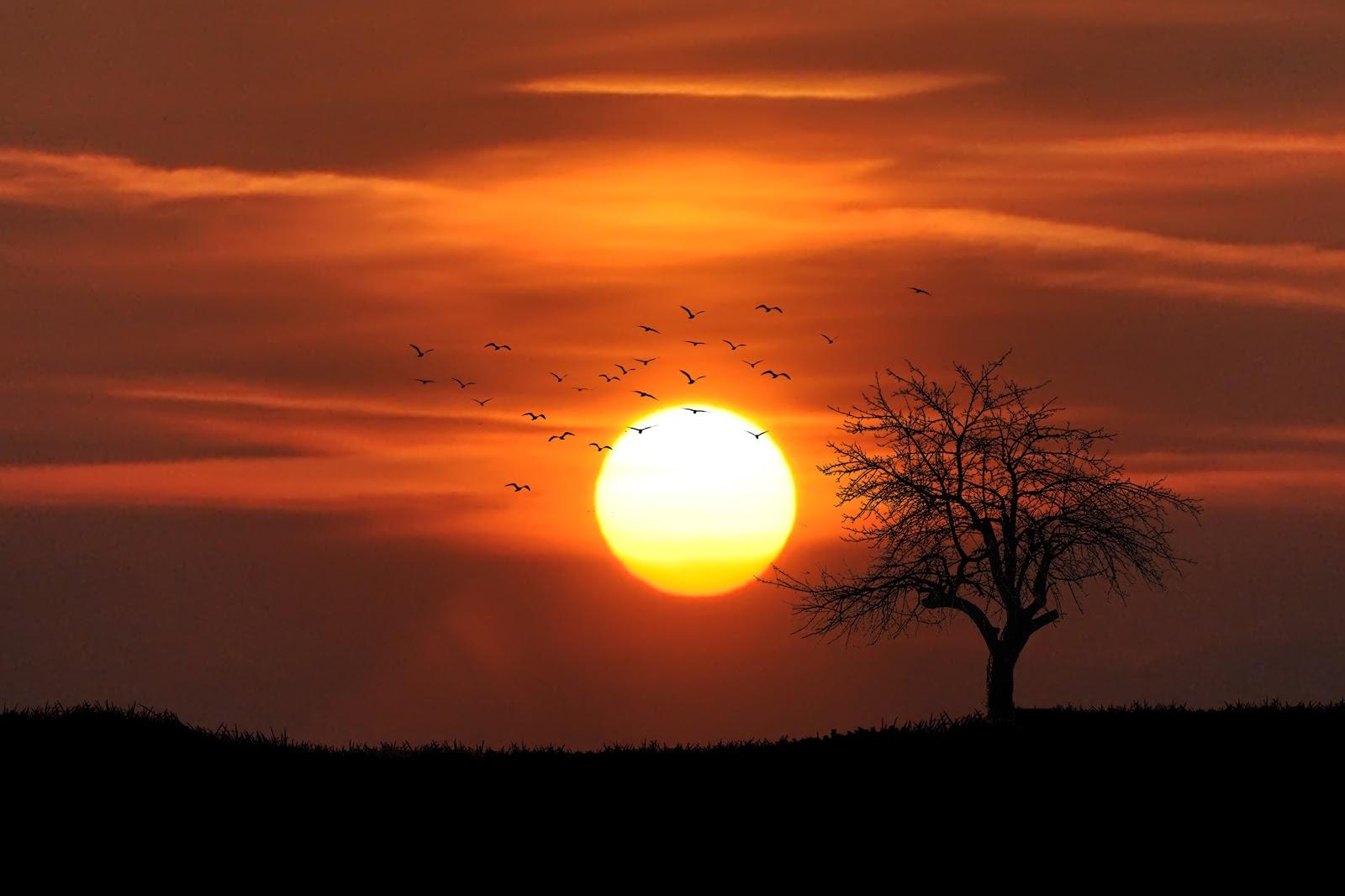Sindrom zalazećeg sunca - zašto navečer uvijek postanu uznemireni?
